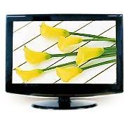 """22"""" LCD Monitor TV"""