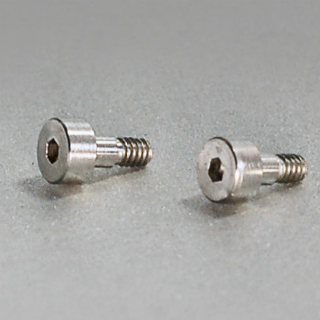 Hexagon Socket Head Cap Screws (Customized)
