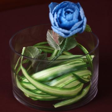 迷你桌上型的盆花--百頁玫瑰藍色